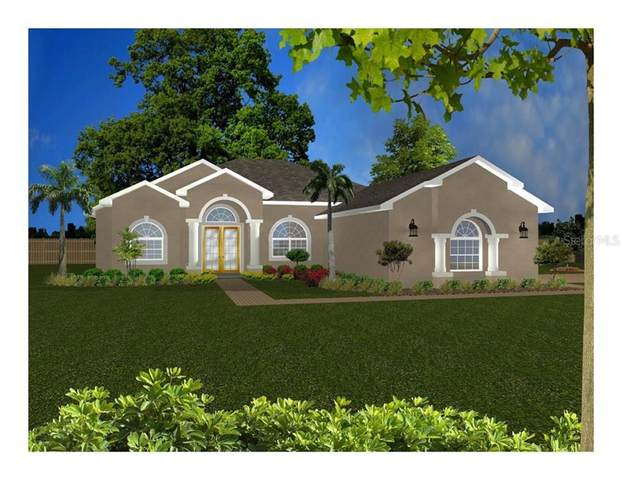 10297 Maybird Avenue, Weeki Wachee, FL 34613 (MLS #T3271101) :: Griffin Group