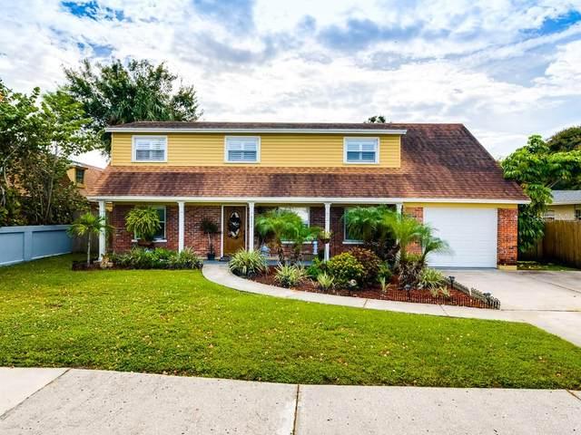 8304 Stillbrook Avenue, Tampa, FL 33615 (MLS #T3271328) :: Frankenstein Home Team