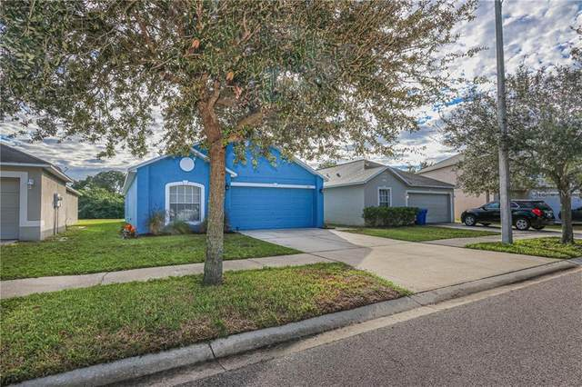 1007 Brenton Leaf Drive, Ruskin, FL 33570 (MLS #T3272578) :: The Paxton Group