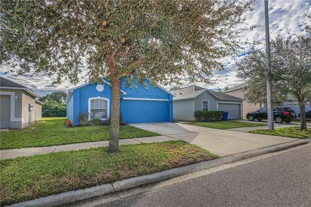 1007 Brenton Leaf Drive, Ruskin, FL 33570 (MLS #T3272578) :: MavRealty