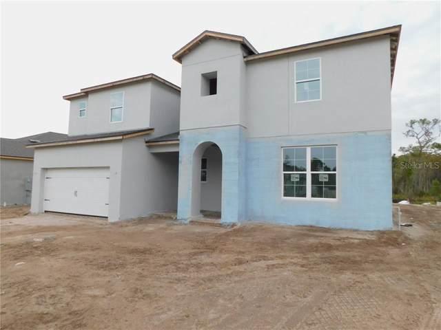 11736 Ranchers Gap Drive, Odessa, FL 33556 (MLS #T3272847) :: Pepine Realty