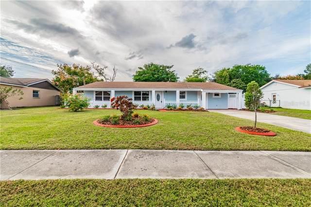 436 Flamingo Drive, Apollo Beach, FL 33572 (MLS #T3273466) :: Delgado Home Team at Keller Williams