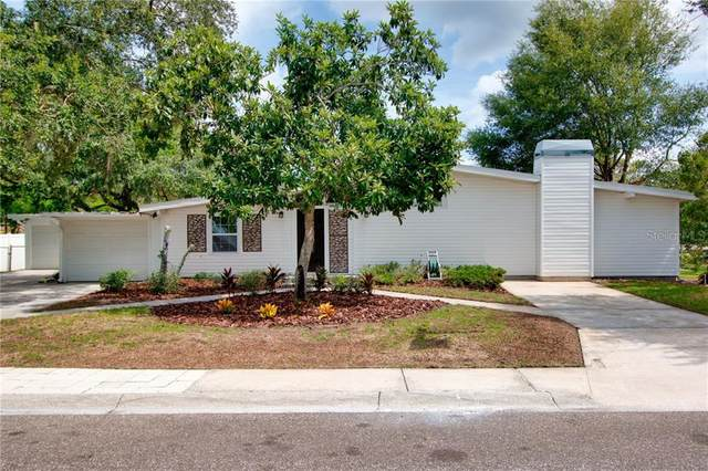 218 Park Ridge Avenue, Temple Terrace, FL 33617 (MLS #T3273562) :: Dalton Wade Real Estate Group