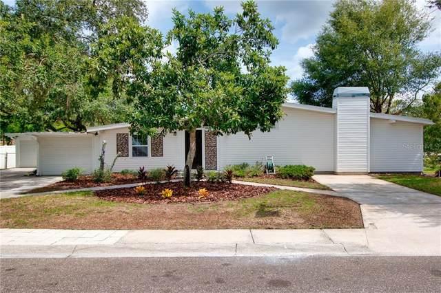 218 Park Ridge Avenue, Temple Terrace, FL 33617 (MLS #T3273562) :: Griffin Group