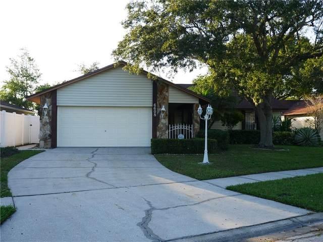 6608 Ranger Drive, Tampa, FL 33615 (MLS #T3274057) :: Sarasota Gulf Coast Realtors