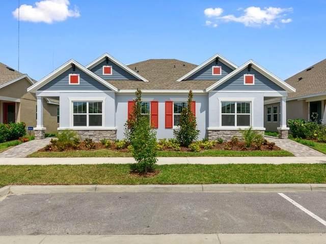 13918 Kingfisher Glen Drive, Lithia, FL 33547 (MLS #T3274703) :: Vacasa Real Estate