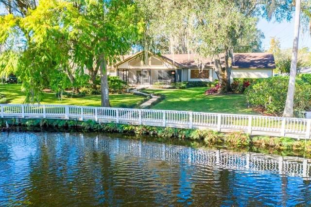1407 N Riverhills Drive, Temple Terrace, FL 33617 (MLS #T3275249) :: Dalton Wade Real Estate Group