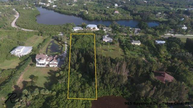 915 Bayshore Drive, Terra Ceia, FL 34250 (MLS #T3275386) :: Everlane Realty