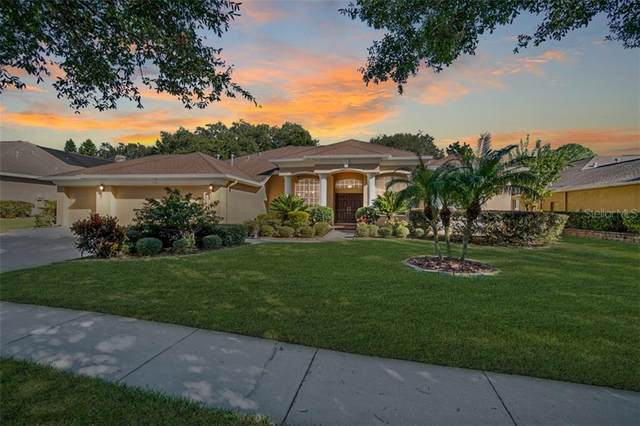 2929 Hillside Ramble Drive, Brandon, FL 33511 (MLS #T3277680) :: The Brenda Wade Team