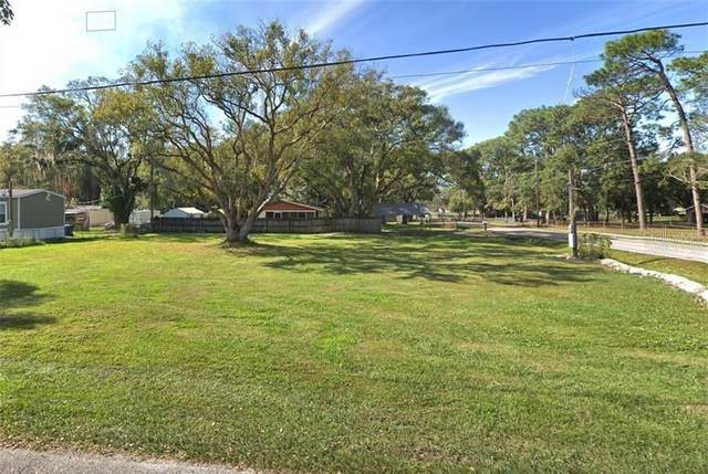 12924 Worchester Avenue, Tampa, FL 33624 (MLS #T3278208) :: Griffin Group