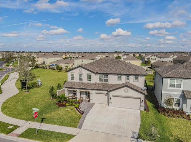 31368 Palm Song Place, Wesley Chapel, FL 33545 (MLS #T3278252) :: Griffin Group