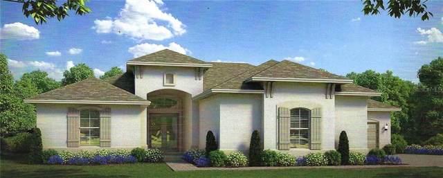 5226 Lake Venice Drive, Wimauma, FL 33598 (MLS #T3280811) :: Everlane Realty