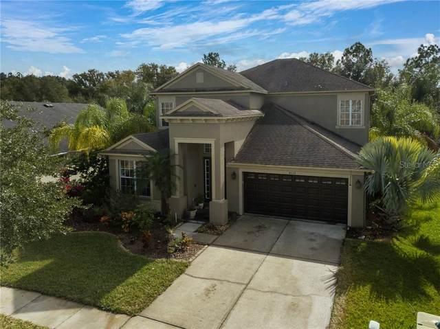 4033 Waterville Avenue, Wesley Chapel, FL 33543 (MLS #T3282045) :: Everlane Realty