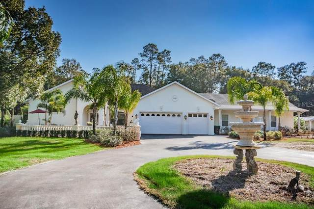 8100 Gilliam Road, Apopka, FL 32703 (MLS #T3282503) :: Expert Advisors Group