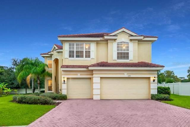 12831 Darby Ridge Drive, Tampa, FL 33624 (MLS #T3282864) :: Cartwright Realty