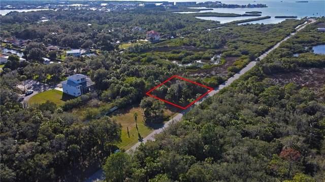 5404 Koons Road N, Port Richey, FL 34668 (MLS #T3284258) :: GO Realty