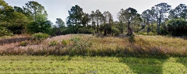Hamerton Road, North Port, FL 34288 (MLS #T3285507) :: Griffin Group