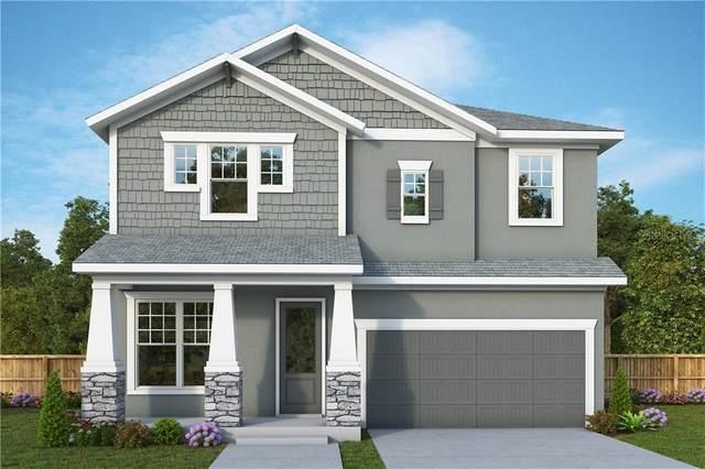 3715 W Leona Street, Tampa, FL 33629 (MLS #T3285735) :: Visionary Properties Inc
