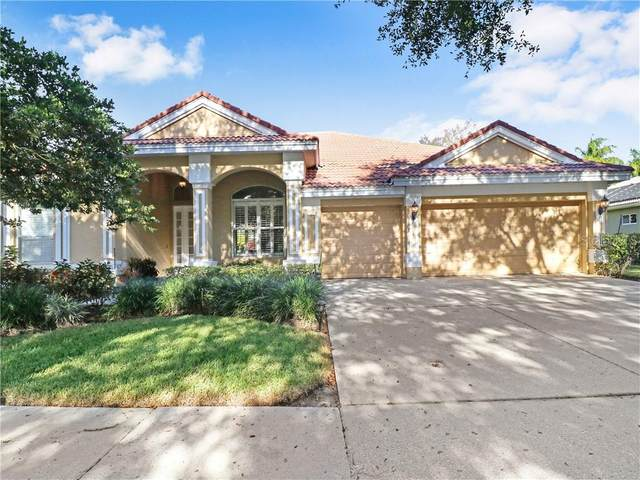 9110 Woodridge Run Drive, Tampa, FL 33647 (MLS #T3286011) :: Cartwright Realty