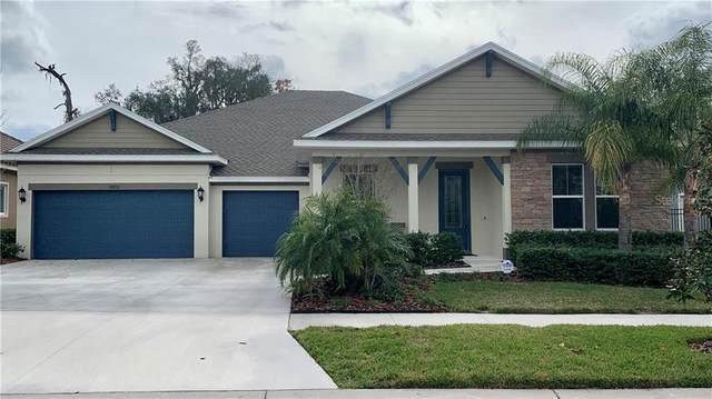 6323 Knob Tree Drive, Lithia, FL 33547 (MLS #T3286181) :: Sarasota Property Group at NextHome Excellence