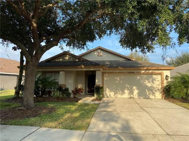 6350 Bridgecrest Drive, Lithia, FL 33547 (MLS #T3286367) :: Frankenstein Home Team