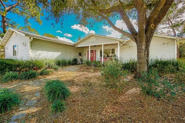14402 Waterloo Road, Odessa, FL 33556 (MLS #T3286459) :: Premier Home Experts