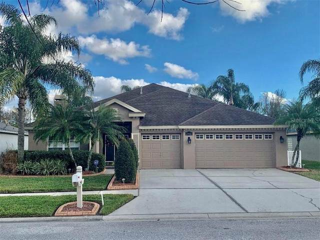 29439 Allegro Drive, Wesley Chapel, FL 33543 (MLS #T3286490) :: Gate Arty & the Group - Keller Williams Realty Smart