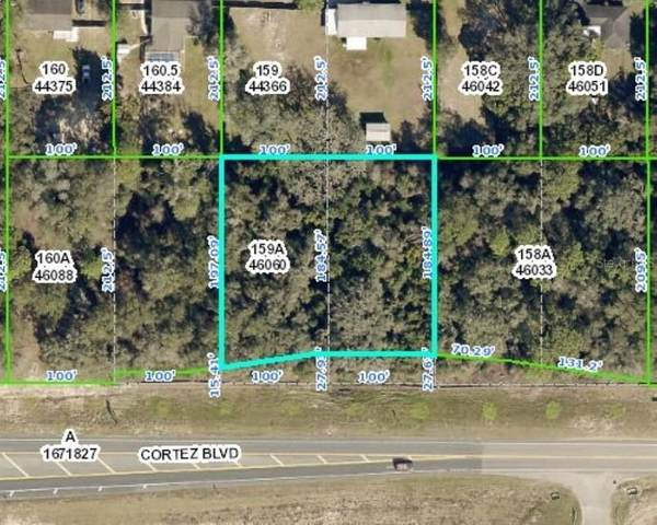 Cortez Boulevard, Dade City, FL 33523 (MLS #T3286576) :: Everlane Realty