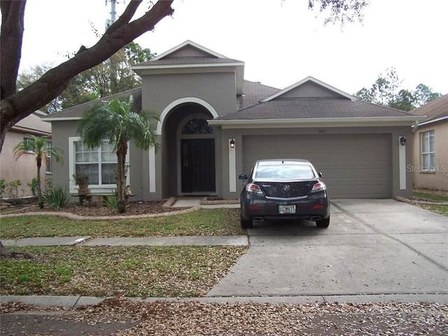 8111 Moccasin Trail Drive, Riverview, FL 33578 (MLS #T3289171) :: The Duncan Duo Team