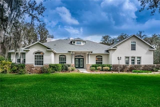 3505 Mcintosh Oaks Court, Dover, FL 33527 (MLS #T3290549) :: Team Borham at Keller Williams Realty