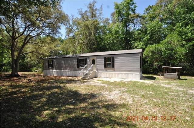 11220 NE 234TH PLACE Road, Fort Mc Coy, FL 32134 (MLS #T3291953) :: The Kardosh Team