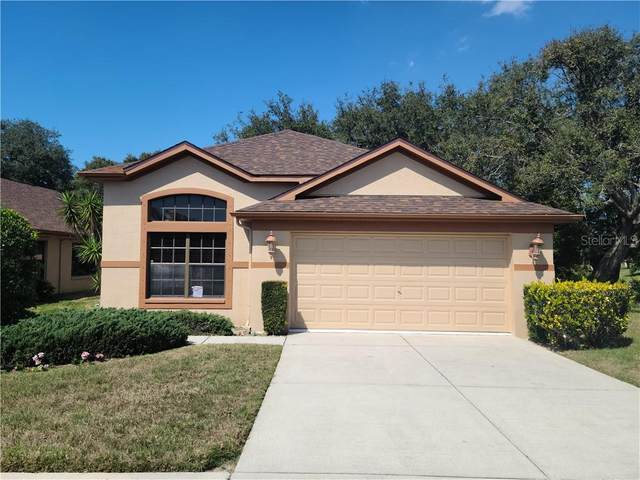 9321 Haas Drive, Hudson, FL 34669 (MLS #T3292101) :: Keller Williams Realty Peace River Partners