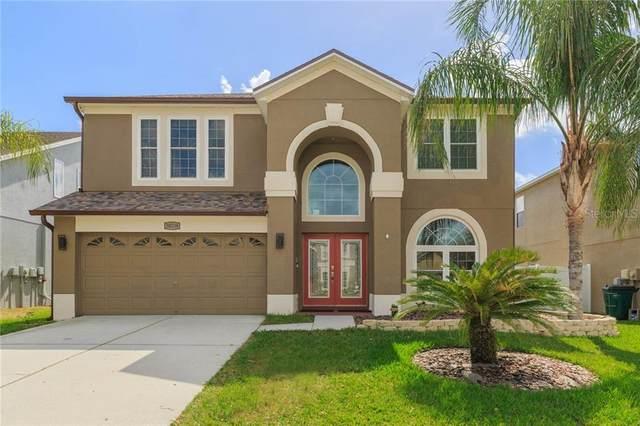 30538 Annadale Drive, Wesley Chapel, FL 33545 (MLS #T3292822) :: Pepine Realty