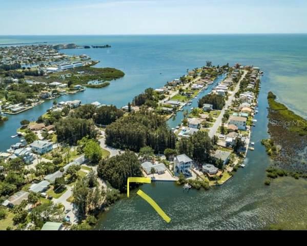 Driftwood Dr, Hudson, FL 34667 (MLS #T3294165) :: Armel Real Estate