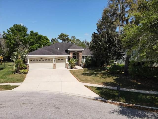 5115 Tari Stream Way, Brandon, FL 33511 (MLS #T3296990) :: Florida Real Estate Sellers at Keller Williams Realty