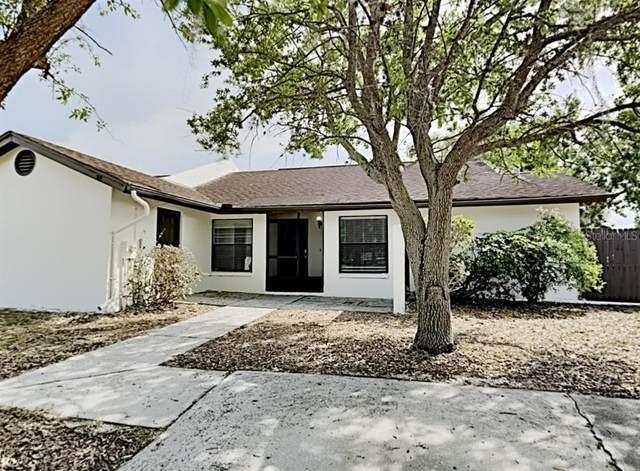 5216 Bellefield Drive, Tampa, FL 33624 (MLS #T3297966) :: Rabell Realty Group