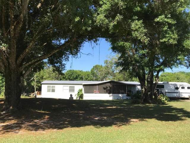 1829 Ranchette Road, Zephyrhills, FL 33543 (MLS #T3298044) :: Premier Home Experts