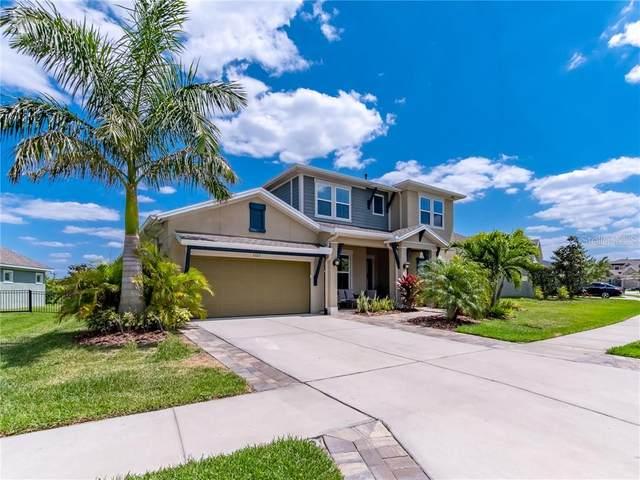 6323 Havensport Drive, Apollo Beach, FL 33572 (MLS #T3298603) :: Frankenstein Home Team