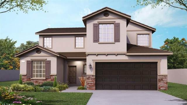 15725 Serengeti Boulevard, Spring Hill, FL 34610 (MLS #T3298644) :: Armel Real Estate