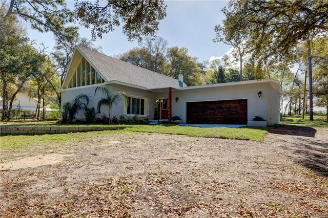 9930 Newsome Road, Dade City, FL 33525 (MLS #T3299578) :: The Lersch Group