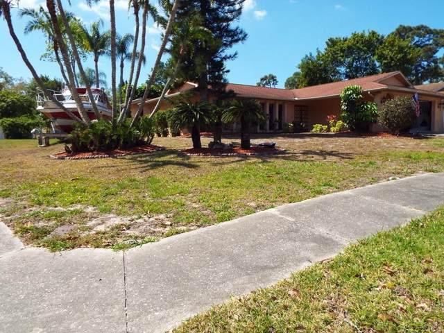 1611 Treasure Drive, Tarpon Springs, FL 34689 (MLS #T3299907) :: Team Borham at Keller Williams Realty