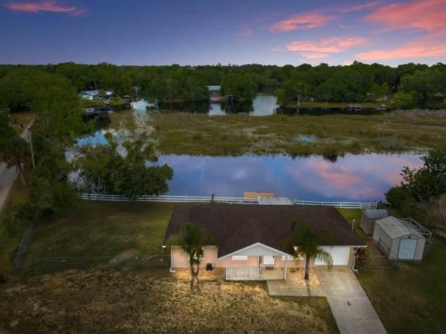4269 E Gloria Drive, Hernando, FL 34442 (MLS #T3300409) :: Bustamante Real Estate