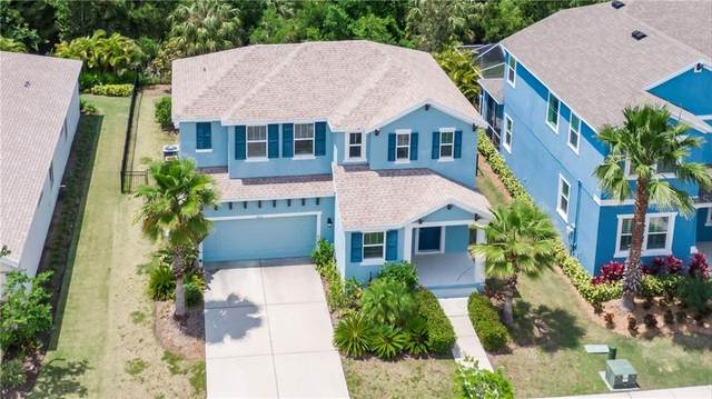 5110 Coastal Scene Drive, Apollo Beach, FL 33572 (MLS #T3300841) :: Everlane Realty