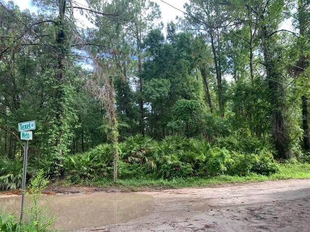 Texel Avenue, New Port Richey, FL 34654 (MLS #T3300981) :: Zarghami Group