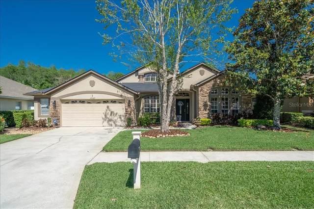 16307 Nikki Lane, Odessa, FL 33556 (MLS #T3301478) :: The Lersch Group