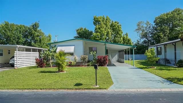 8807 Sheldon West Drive, Tampa, FL 33626 (MLS #T3301713) :: BuySellLiveFlorida.com