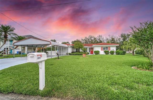 805 White Heron Boulevard, Ruskin, FL 33570 (MLS #T3302030) :: The Robertson Real Estate Group