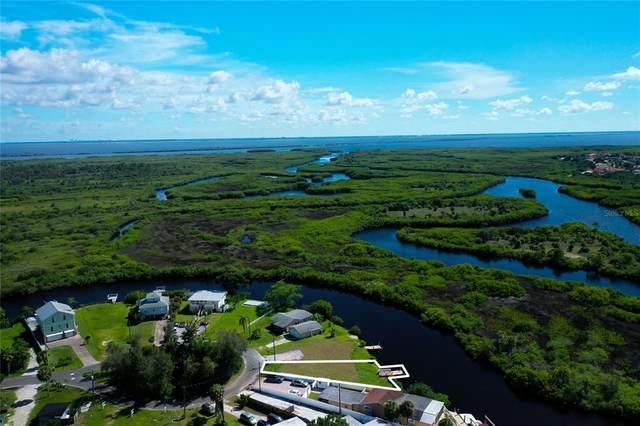 8943 Rocky Creek Drive, Tampa, FL 33615 (MLS #T3302107) :: Gate Arty & the Group - Keller Williams Realty Smart