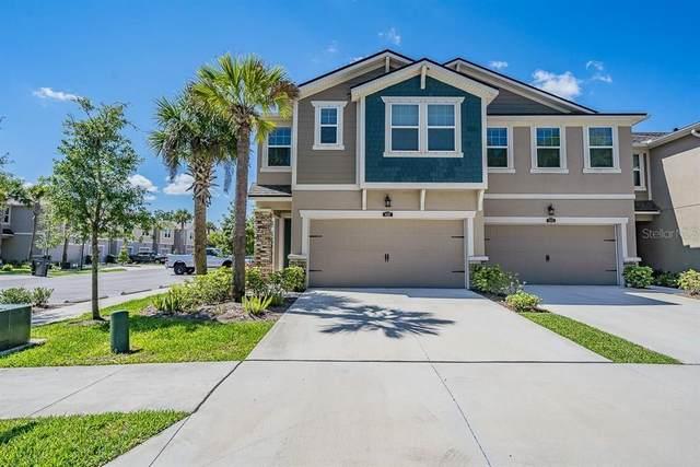 14317 Pondhawk Lane, Tampa, FL 33625 (MLS #T3302219) :: Armel Real Estate