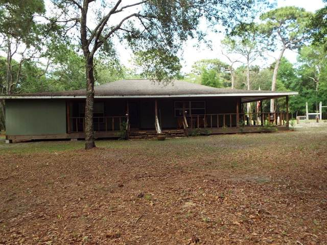 14707 Delbell Road, Hudson, FL 34669 (MLS #T3302494) :: The Price Group